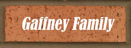 Gaffneyfamily
