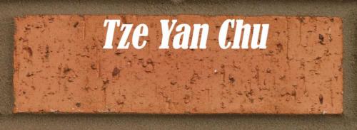 Tze Yan Chu