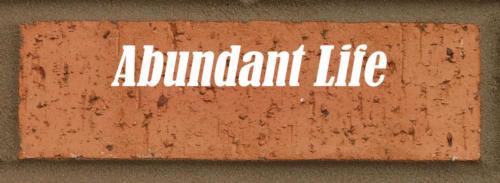 abundantlife2