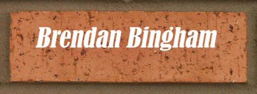 brendanbingham